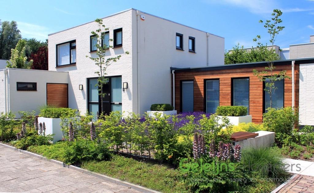 Design voortuin in roosendaal geleijns hoveniers for Design tuinen