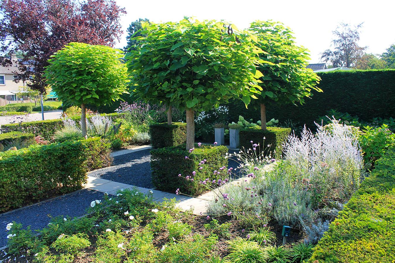 voortuin_geleijns hoevniers_tuinaanleg_zevenbergen_taxus haag_bolbomen_tuinonderhoud_bloeiende planten